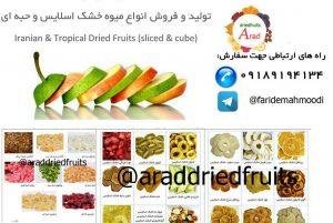 نمایندگی فروش میوه خشک های استوایی